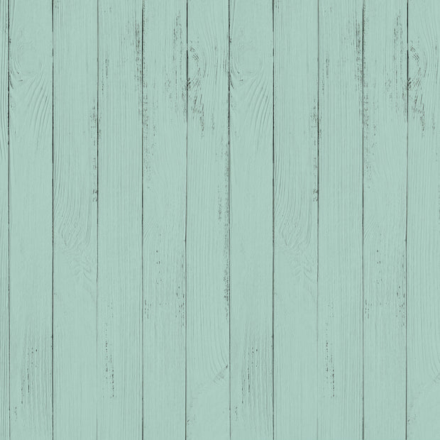 "Peppermint Kisses 12 x 12"" Scrapbook Paper - Minty"
