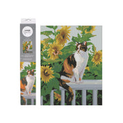 Kaiser Sparkle Kit 440x340mm - MEOW