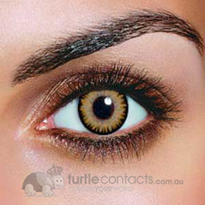 Dual Colour Brown Contact Lenses (90 Day)