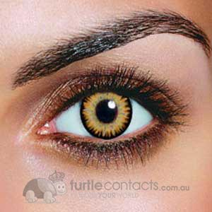 Triple Colour Brown Contact Lenses (90 Day)