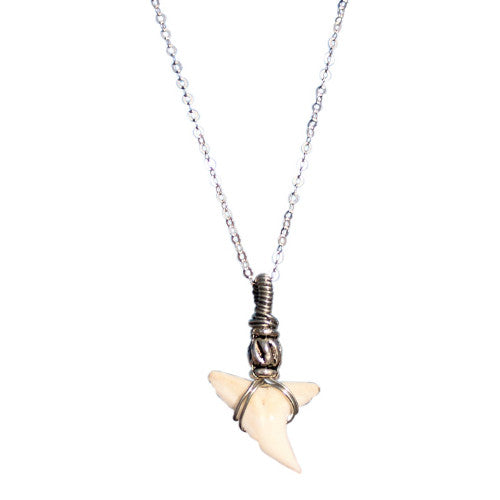 913b9fa46506d Northern Beaches - Natural Sharks Tooth Necklace