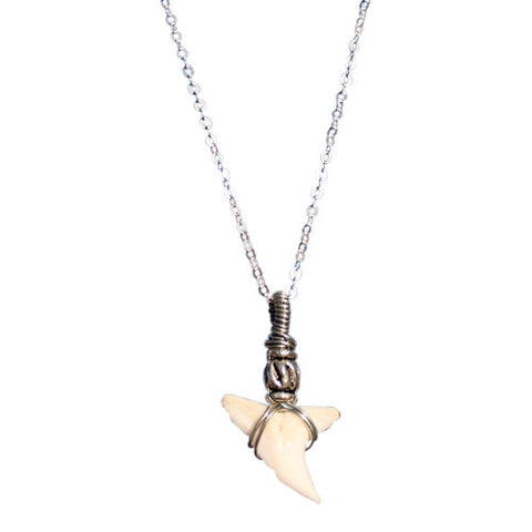 Northern Beaches - Natural Sharks Tooth Necklace