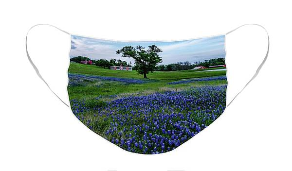 Bluebonnet Farms