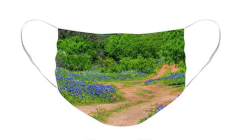 Road To Bluebonnets