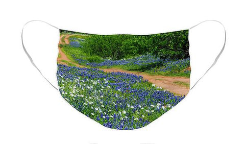 The Road To Bluebonnet Haven IV