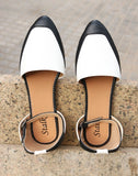 Dulcet Pointed Toe Ballerina