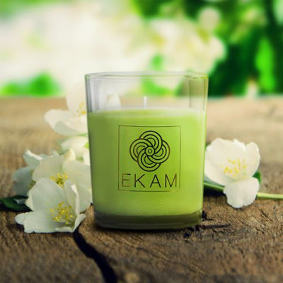 Jasmine Shot Glass Candle<br>(Pick Any 12 & Get 50% Off)