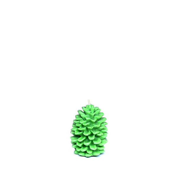 Winter Birch Wood Pine Cone Scented Candle, 123gms