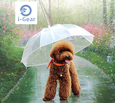 iGear Umbrella Dog Leash