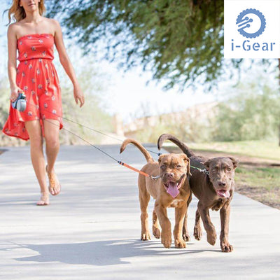 iGear No Tangle Dual Retractable Double Leash (3 Metre) - 50lb per Dog
