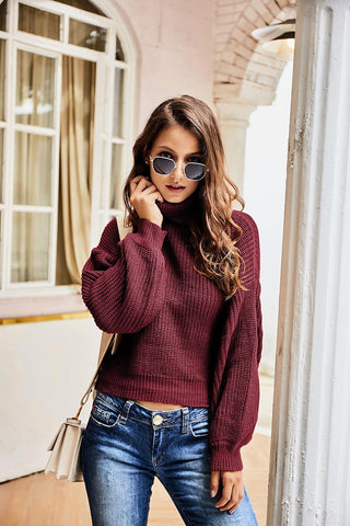 2020 New Europe, America, autumn and winter high collar sweater top - girlyrose.com