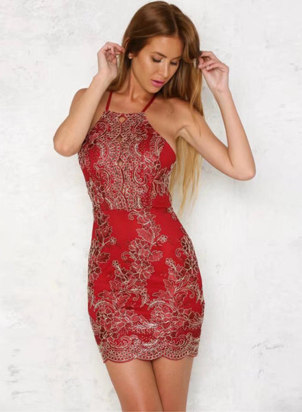 Red Backless Bodycon Lace Embroidery Dress