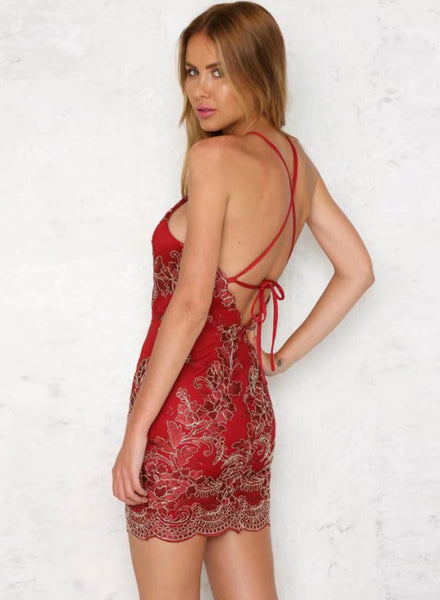 Red Backless Bodycon Lace Embroidery Dress - girlyrose.com