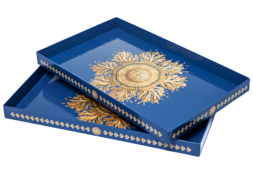 Two Yocaly Blue Decorative Trays