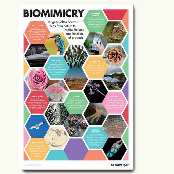 Biomimicry examples poster