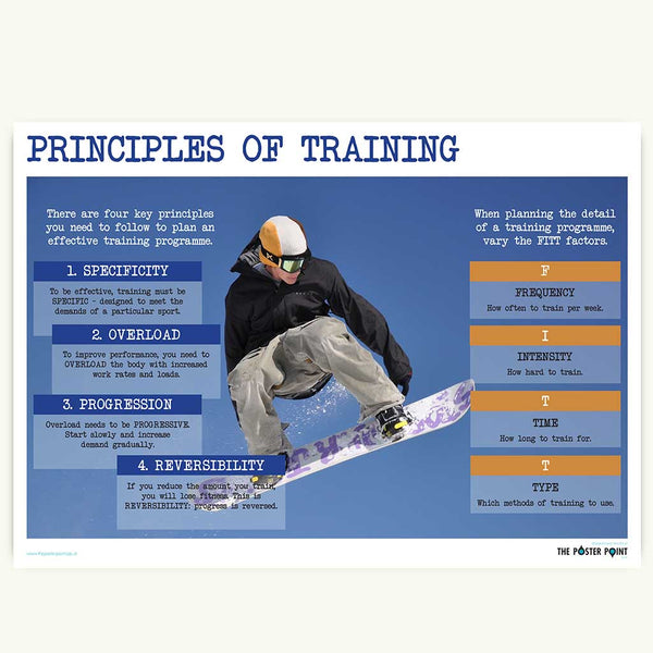 Principles of exercise poster