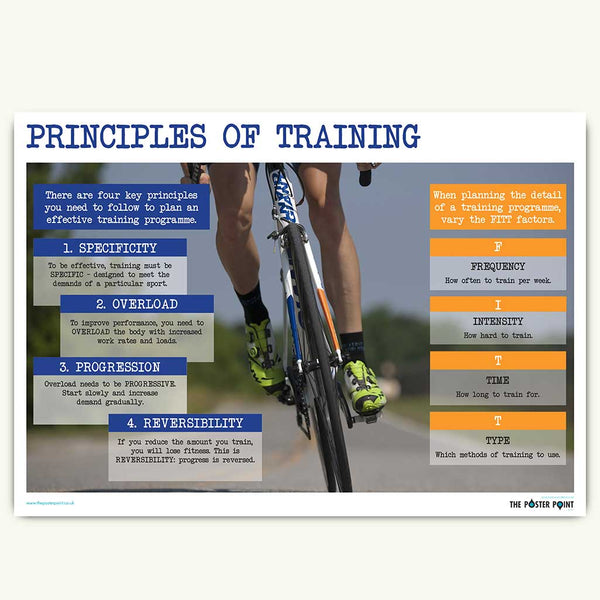 Principles of fitness poster