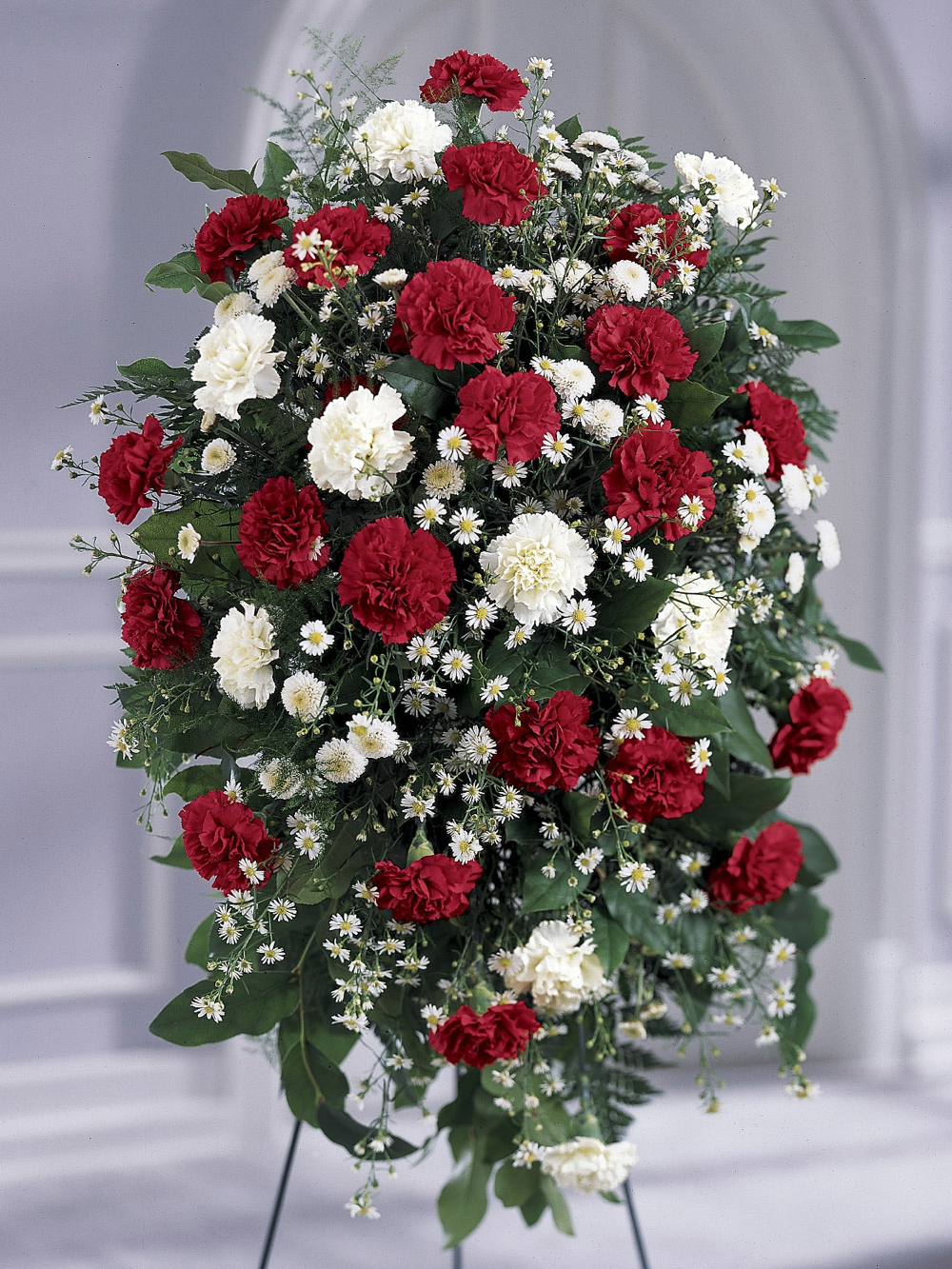 Red & White Carnation Spray