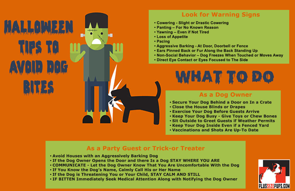 Halloween Tips to Avoid Dog Bites