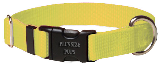 Plus Size Pups Solid Color Dog Collar Neon Yellow
