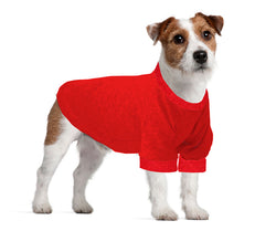 Jack Russel / Rat Terrier Long T-Shirt - Fits 9 to 12 Pound Dog - Available in 6 Colors!