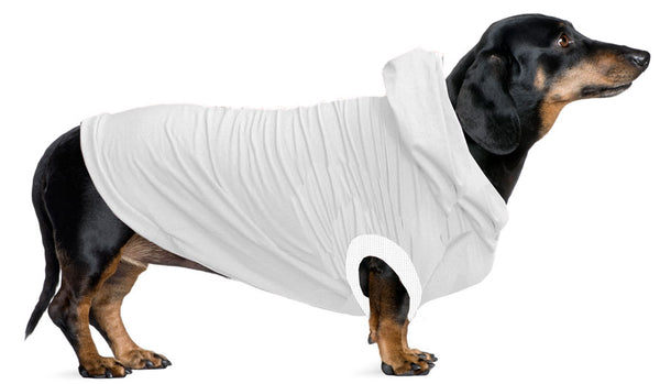 Jack Russel/Terrier/Dachshund (Mini) Hoodie T-Shirt - Fits 9 to 12 LB Dog - Available in 6 Colors!