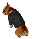 French Bulldog Shorty T-Shirt - Fits 16 to 30 Pound Dog - Available in 6 Colors!