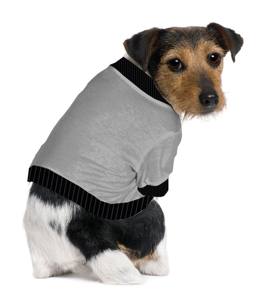 Jack Russel/Pom/Rat Terrier Shorty T-Shirt - Fits 9 to 12 LB Dog - Available in 6 Colors!