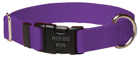 Plus Size Pups Solid Color Dog Collar Purple