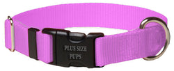 Plus Size Pups Solid Dog Collar Rose Pink