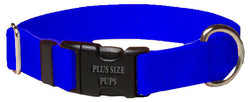 Plus Size Pups Solid Color Dog Collar Royal Blue