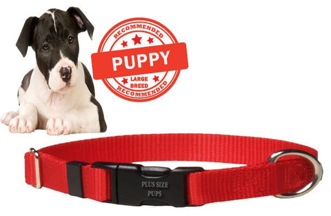 Puppy Dog Collar - Red