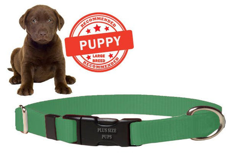 Puppy Dog Collar - Green