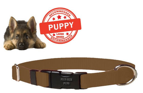 Puppy Dog Collar - Brown