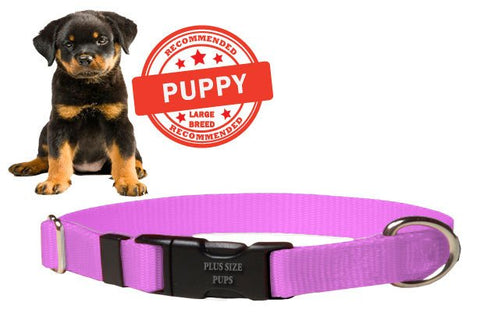 Puppy Dog Collar - Pink