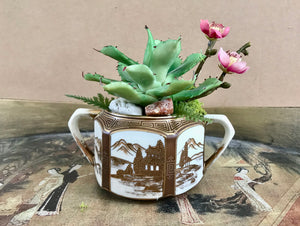 Antique Noritake Nippon Sugar Bowl Planter with Green Cactus and Purple Cherry Blossoms - Nature Land Candles