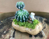 Decorative Planter in Unique Ceramic Potato with Cactus & Owl - Nature Land Candles