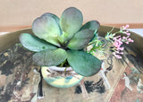 Decorative Planter In A Multi-Colored Ceramic Planter With Green Succulents & Purple Flowers - Nature Land Candles