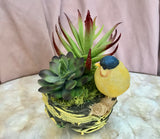 Ceramic Bird Nest with Yellow Bird Planter with Artificial Green Grass Succulents - Nature Land Candles
