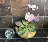 Decorative Planter in Green Ceramic Teapot with Pink Flowers Green Grass Succulents - Nature Land Candles