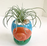 Decorative Planter with Artificial Tropical Plant in a Ceramic Seashell Planter - Nature Land Candles