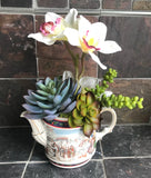 Vintage Sadler Teapot with Artificial White Orchids and Green Grass Succulents - Nature Land Candles