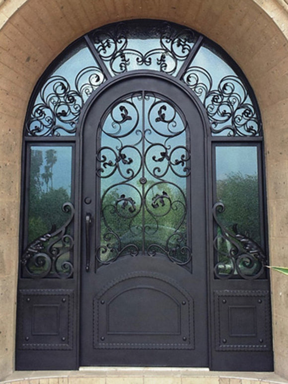 iron single door with sidelites 006