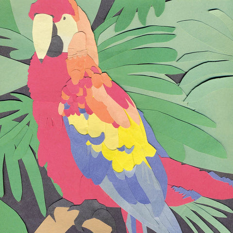 Algernon Cadwallader - Parrot Flies (Limited Edition Opaque Orange Vinyl LP x/400)