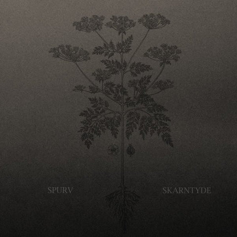 Spurv - Skarntyde (Limited Edition Vinyl LP)