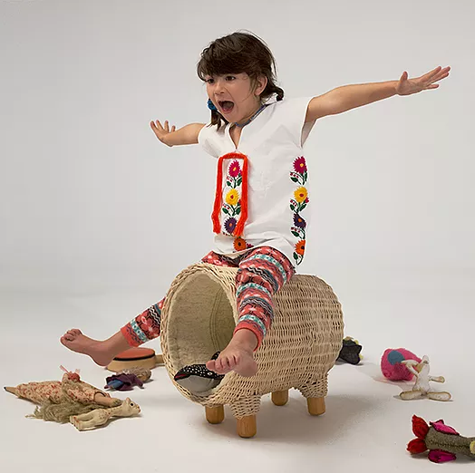 Burro Toy Storage and Stool