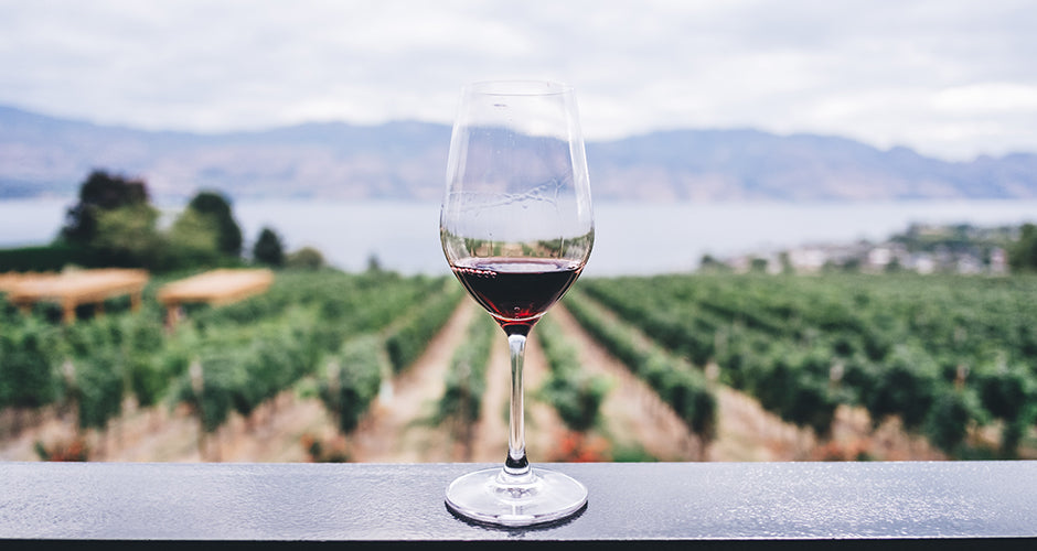 The Best Valle de Guadalupe Wineries