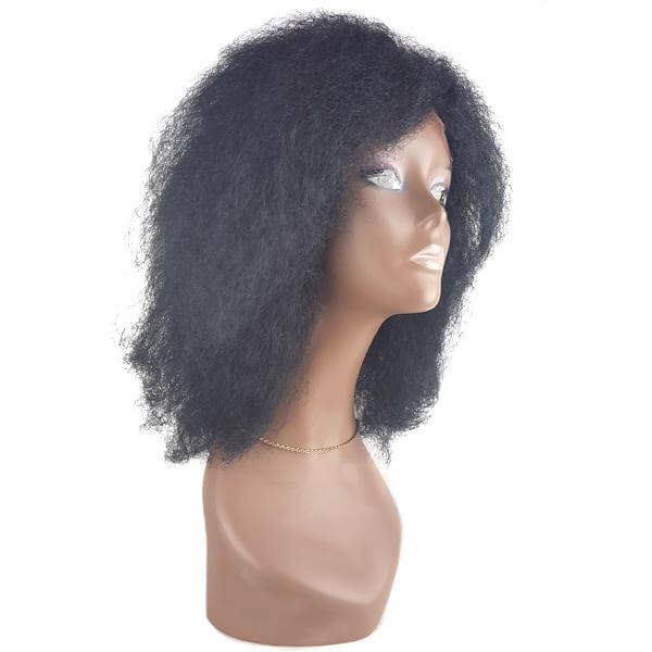 It Tress Brazilian Virgin Remy Silk Lace Front Wig - BH MONICA