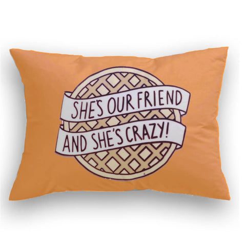 Crazy Friends Cojin decorativo