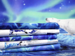 Sky Blue Fabric - Northern Lights 24425 B - Mystic Sunset